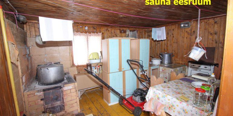 saun1